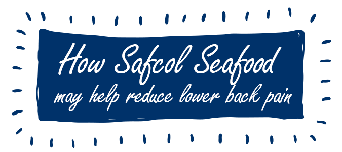 How Safcol Seafood may help reduce lower back pain